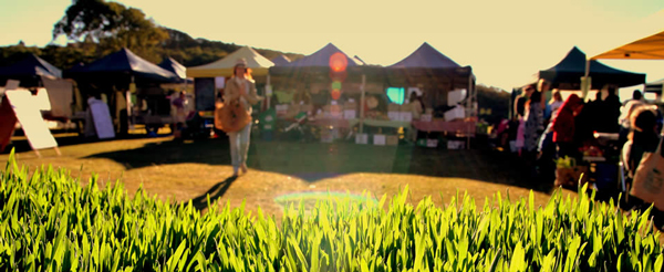 gold coast farmers markets